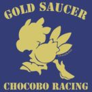Gold Saucer Chocobo Racing by chocoboco