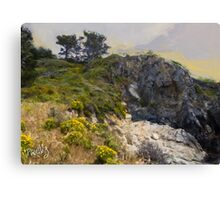 Stairway to China Cove, Point Lobos, Carmel, CA Canvas Print