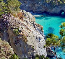 China Cove, Point Lobos, CA by JimPavelle