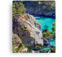 China Cove, Point Lobos, CA Canvas Print