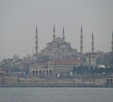 Blue Mosque by rasim1