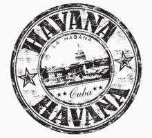 Made In Cuba by Robert Claudio