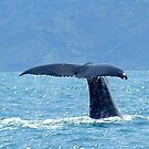 Whales tail  by Mar48hen
