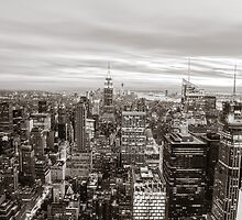 New York City by Vivienne Gucwa