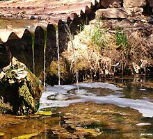 Mossy Falls Pueblo Colorado by JFantasma