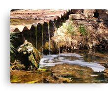 Mossy Falls Pueblo Colorado Canvas Print