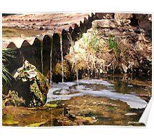Mossy Falls Pueblo Colorado Poster