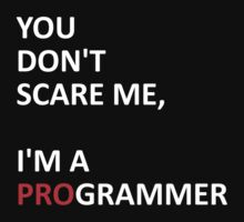 I'm a PROgrammer  by Dman329