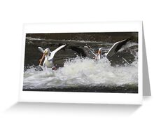 wings across the whitewater Greeting Card
