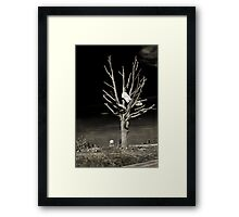 Remembering Joplin Framed Print