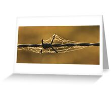 Wire and Web Greeting Card