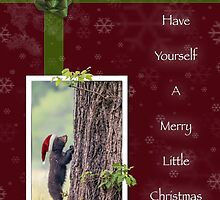 A Merry Little Christmas by Owed To Nature