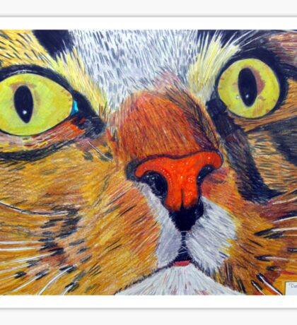 269 - MITCH (CLOSE-UP) - DAVE EDWARDS - COLOURED PENCILS & FINELINERS - 2009 Sticker