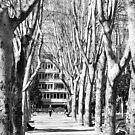Stroll  by DearMsWildOne