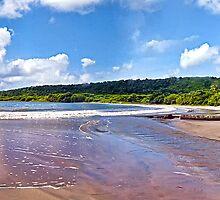 """La Sagesse"" beach/Grenada by globeboater"