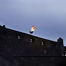 Edinburgh Castle - Doctor Who by robotplunger