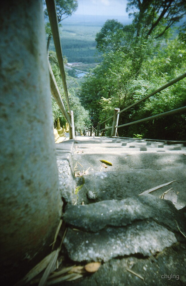 Ant's Stare Down the Stairs - Lomo by chylng