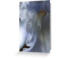 Purple Passion ~ Greeting Card