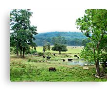 """The Watering Hole"" Canvas Print"