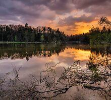 Spring evening by Peter Zajfrid