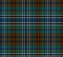 02420 Duval County, Florida E-fficial Fashion Tartan Fabric Print Iphone Case by Detnecs2013