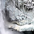 Snoqualmie Falls in Winter by Tori Snow