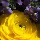 Yellow and Purple Flowers by KellyHeaton