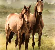 The Youngsters by Trudi's Images