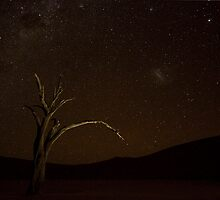 Under The Milky Way - Namibia Africa by Beth  Wode