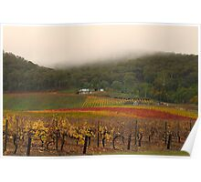 Misty Bright Autumn Vineyard Poster