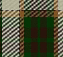 02428 Dogwood Fashion Tartan Fabric Print Iphone Case by Detnecs2013
