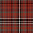 02433 Gwinnett County, Georgia District Tartan Fabric Print Iphone Case by Detnecs2013