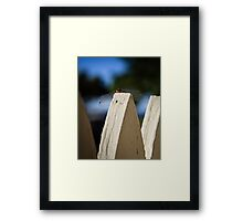 Cool Dude Dragonfly Framed Print