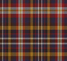02435 Collin County, Texas E-fficial Fashion Tartan Fabric Print Iphone Case by Detnecs2013