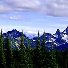 Mountains in July by Tori Snow