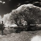 Infra-red Springtime at the Arboretum -Study No. 1 by Max Buchheit