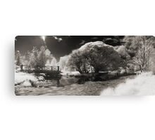 Infra-red Springtime at the Arboretum -Study No. 1 Canvas Print