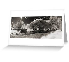 Infra-red Springtime at the Arboretum -Study No. 1 Greeting Card