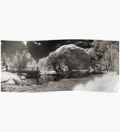 Infra-red Springtime at the Arboretum -Study No. 1 Poster