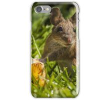 Field Mouse on Alert iPhone Case/Skin