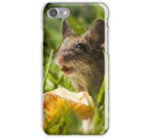Field Mouse in the Grass iPhone Case/Skin