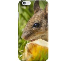 Field Mouse Posing iPhone Case/Skin