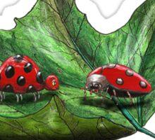 Ladybird wisdom Sticker
