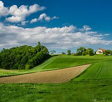 House on the hill by Peter Zajfrid