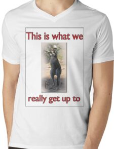 THIS IS WHAT WE REALLY GET UP TO Mens V-Neck T-Shirt
