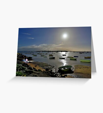 At the Point, Victoria..... Coochi! Greeting Card