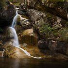 Ladies Bath Falls by Rosie Appleton