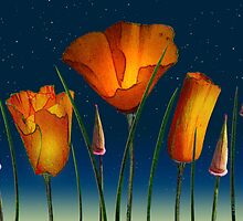 Poppies and Buds by bicyclegirl