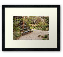 Spring In The Botanic Gardens Framed Print