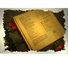 Book of Roses Photographic Print